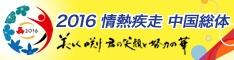 2016 情熱疾走 中国総体